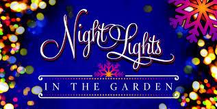 night-lights-2